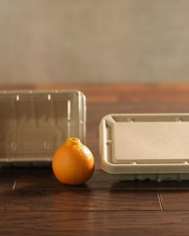 Fiber Tray and Clear Lid