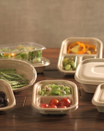 Fiber Trays and Lids