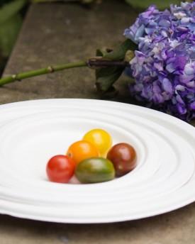 Fiber Round Plates