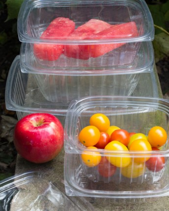 Clear PLA Rectangle Deli Containers and Lids